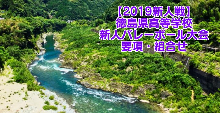 【2019新人戦】徳島県高等学校新人バレーボール大会 要項・組合せ