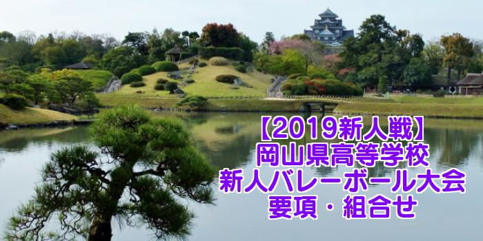 【2019新人戦】岡山県高等学校新人バレーボール大会 要項・組合せ