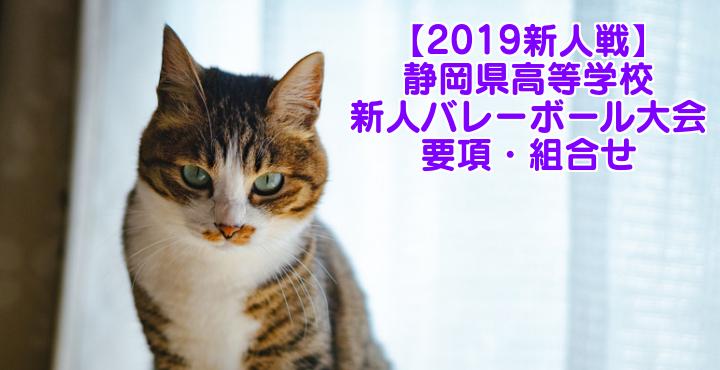 【2019新人戦】静岡県高等学校新人バレーボール大会 要項・組合せ