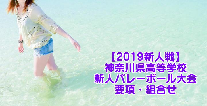 【2019新人戦】神奈川県高等学校新人バレーボール大会 要項・組合せ