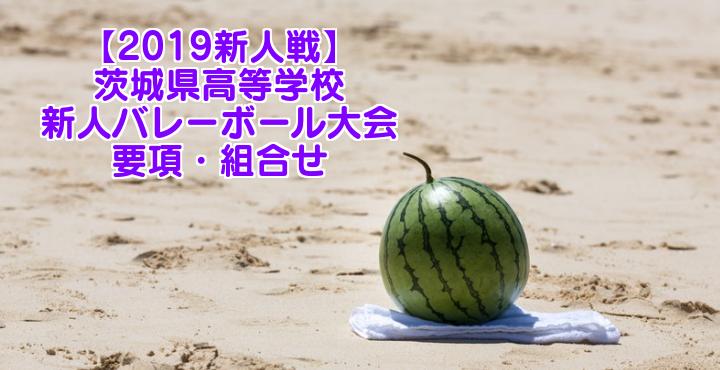【2019新人戦】茨城県高等学校新人バレーボール大会 要項・組合せ