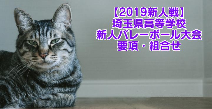 【2019新人戦】埼玉県高等学校新人バレーボール大会 要項・組合せ