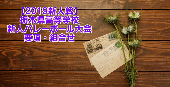 【2019新人戦】栃木県高等学校新人バレーボール大会 要項・組合せ