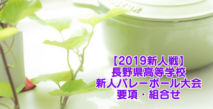 【2019新人戦】長野県高等学校新人バレーボール大会 要項・組合せ