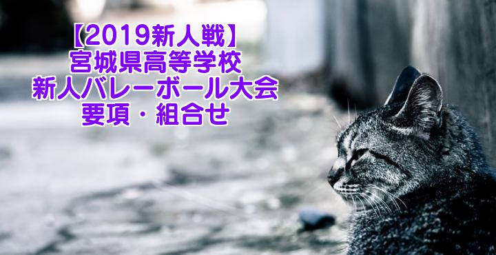 【2019新人戦】宮城県高等学校新人バレーボール大会 要項・組合せ