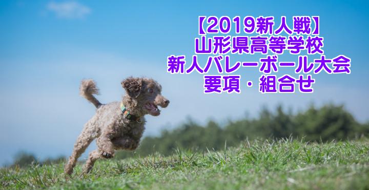 【2019新人戦】山形県高等学校新人バレーボール大会 要項・組合せ