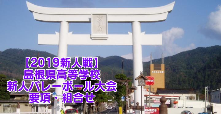 【2019新人戦】島根県高等学校新人バレーボール大会 要項・組合せ