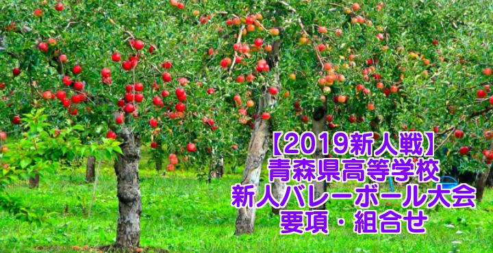 【2019新人戦】青森県高等学校新人バレーボール大会 要項・組合せ