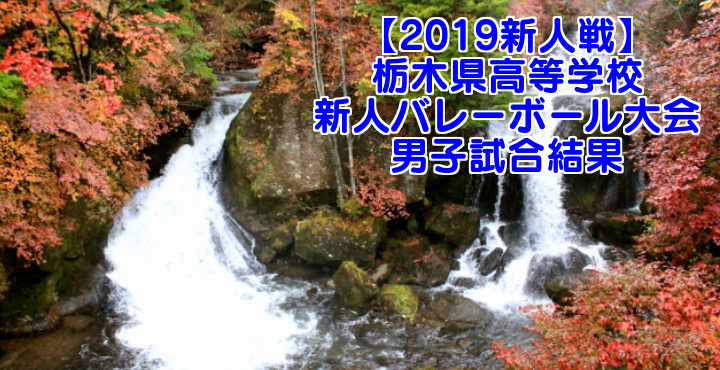 【2019新人戦】栃木県高等学校新人バレーボール大会 男子試合結果