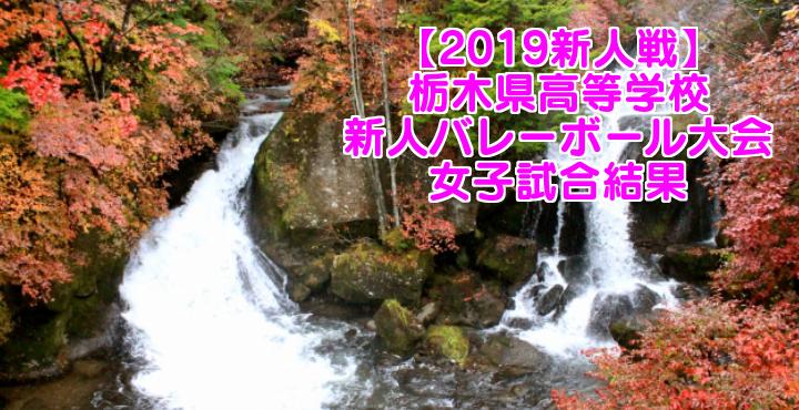 【2019新人戦】栃木県高等学校新人バレーボール大会 女子試合結果
