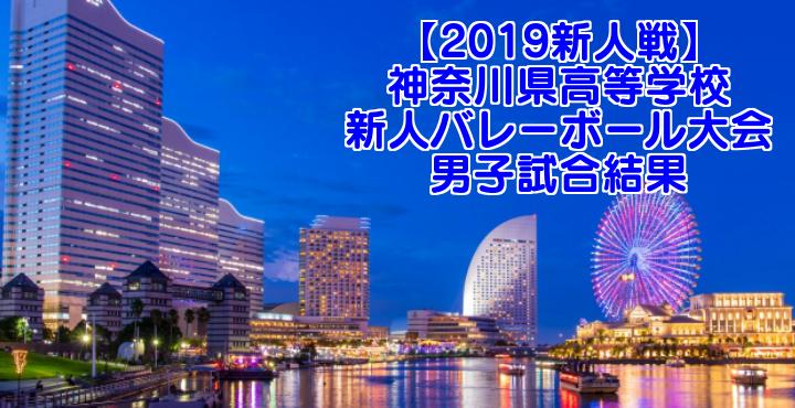 【2019新人戦】神奈川県高等学校新人バレーボール大会 男子試合結果
