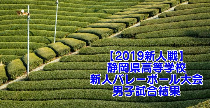 【2019新人戦】静岡県高等学校新人バレーボール大会 男子試合結果