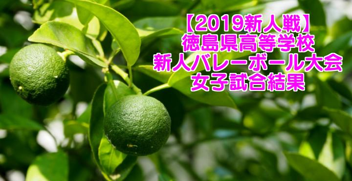 【2019新人戦】徳島県高等学校新人バレーボール大会 女子試合結果