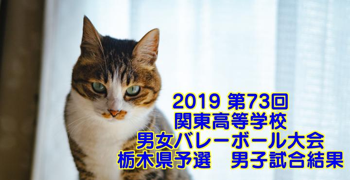 2019 第73回関東高等学校男女バレーボール大会 栃木県予選 男子試合結果