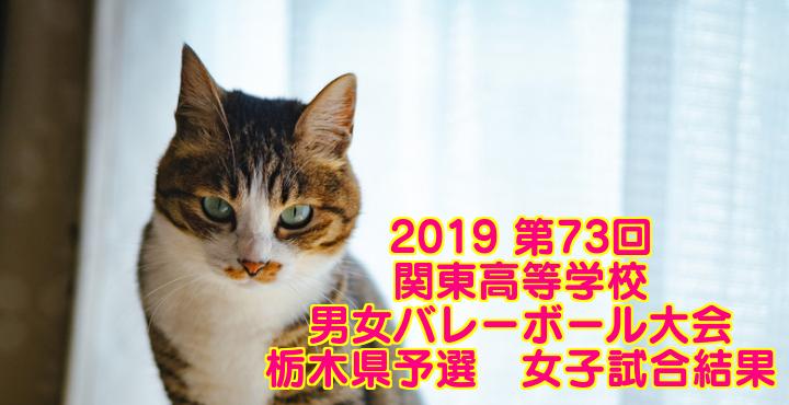2019 第73回関東高等学校男女バレーボール大会 栃木県予選 女子試合結果