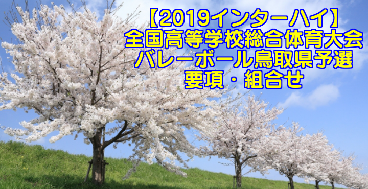 【2019インターハイ】全国高等学校総合体育大会 バレーボール鳥取県予選 要項・組合せ
