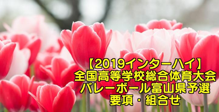 【2019インターハイ】全国高等学校総合体育大会 バレーボール富山県予選 要項・組合せ