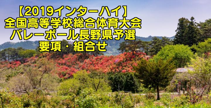 【2019インターハイ】全国高等学校総合体育大会 バレーボール長野県予選 要項・組合せ