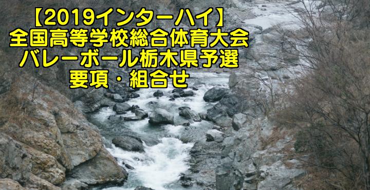 【2019インターハイ】全国高等学校総合体育大会 バレーボール栃木県予選 要項・組合せ