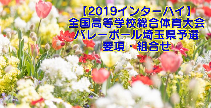 【2019インターハイ】全国高等学校総合体育大会 バレーボール埼玉県予選 要項・組合せ