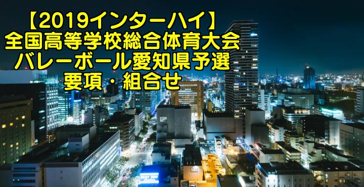 【2019インターハイ】全国高等学校総合体育大会 バレーボール愛知県予選 要項・組合せ