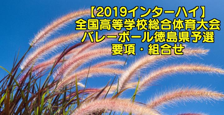 【2019インターハイ】全国高等学校総合体育大会 バレーボール徳島県予選 要項・組合せ