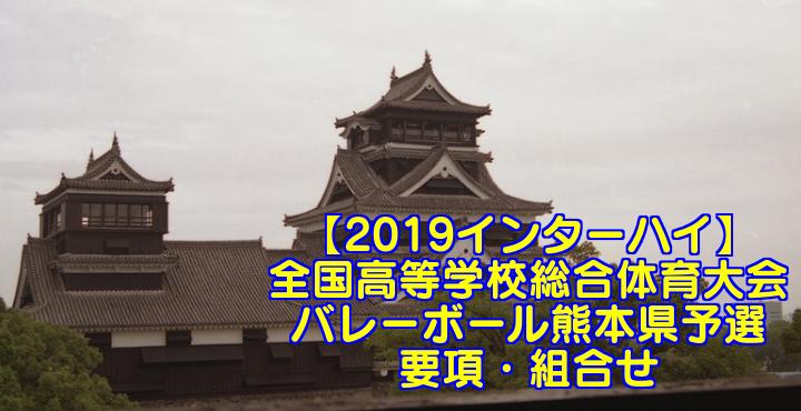 【2019インターハイ】全国高等学校総合体育大会 バレーボール熊本県予選 要項・組合せ