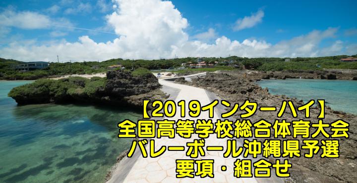【2019インターハイ】全国高等学校総合体育大会 バレーボール沖縄県予選 要項・組合せ