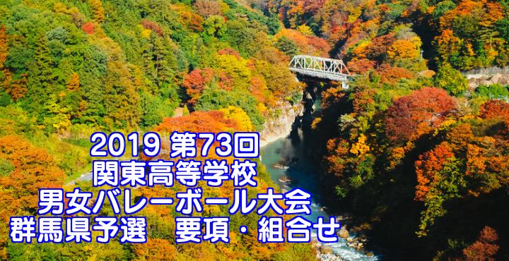2019 第73回関東高等学校男女バレーボール大会 群馬県予選 要項・組合せ