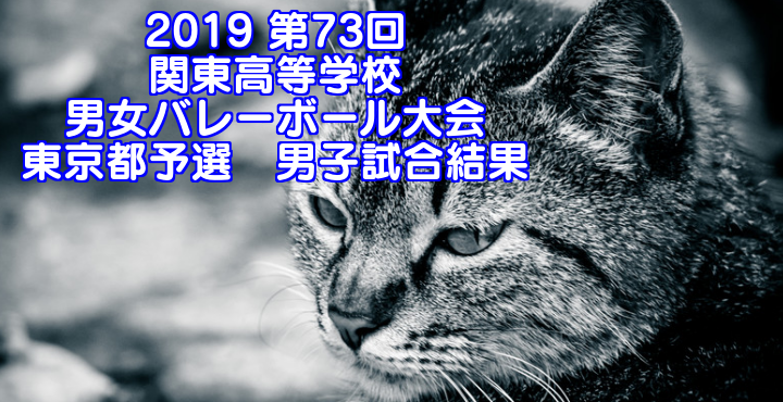 2019 第73回関東高等学校男女バレーボール大会 東京都予選 男子試合結果