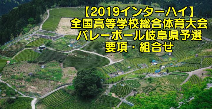 【2019インターハイ】全国高等学校総合体育大会 バレーボール岐阜県予選 要項・組合せ