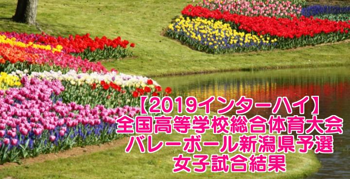 【2019インターハイ】全国高等学校総合体育大会 バレーボール新潟県予選 女子試合結果