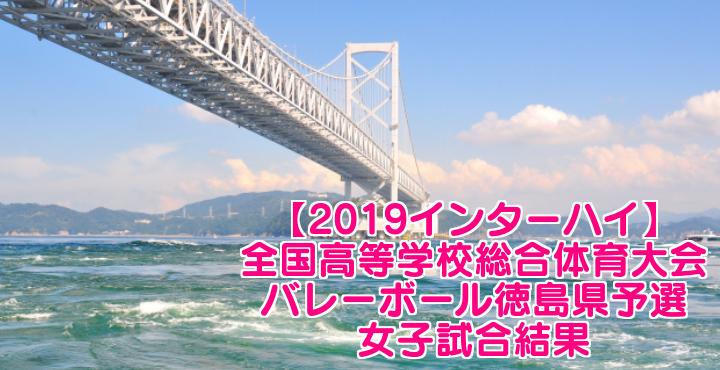【2019インターハイ】全国高等学校総合体育大会 バレーボール徳島県予選 女子試合結果