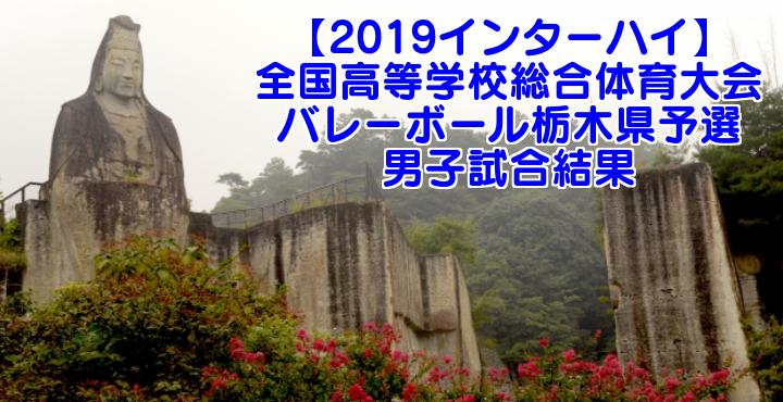 【2019インターハイ】全国高等学校総合体育大会 バレーボール栃木県予選 男子試合結果