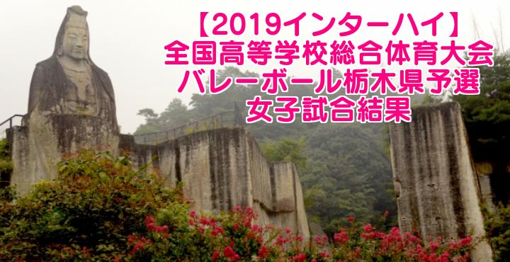 【2019インターハイ】全国高等学校総合体育大会 バレーボール栃木県予選 女子試合結果