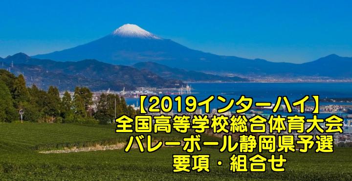 【2019インターハイ】全国高等学校総合体育大会 バレーボール静岡県予選 要項・組合せ