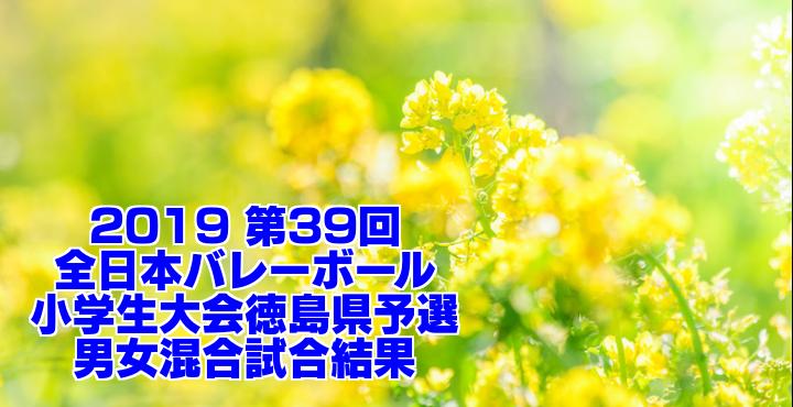 2019 第39回全日本バレーボール小学生大会徳島県予選 男女混合試合結果