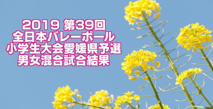 2019 第39回全日本バレーボール小学生大会愛媛県予選 男女混合試合結果