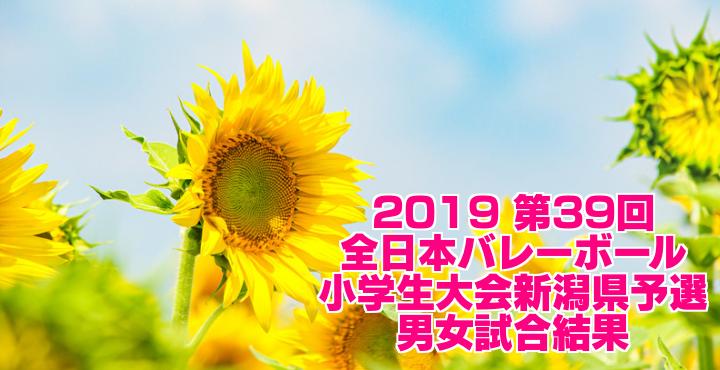 2019 第39回全日本バレーボール小学生大会新潟県予選 男女試合結果