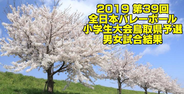 2019 第39回全日本バレーボール小学生大会鳥取県予選 男女試合結果