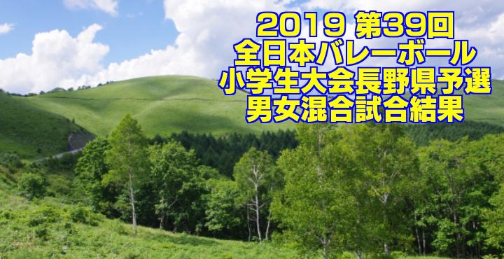 2019 第39回全日本バレーボール小学生大会長野県予選 男女混合試合結果