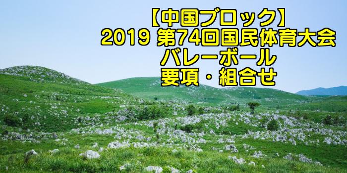 【中国ブロック】2019 第74回国民体育大会バレーボール 要項・組合せ