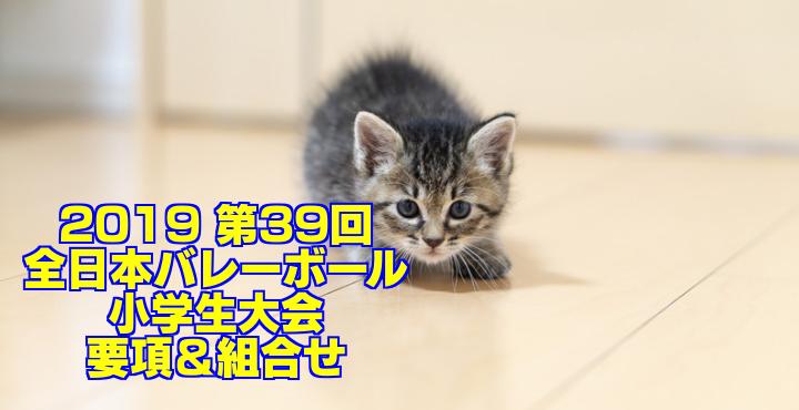 2019 第39回全日本バレーボール小学生大会 要項&組合せ