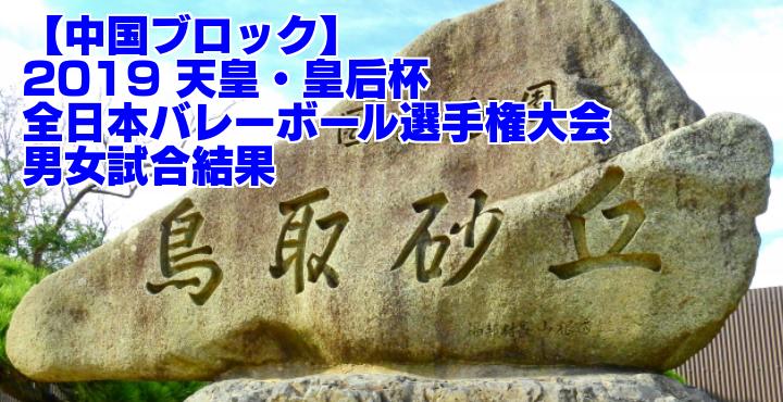 【中国ブロック】2019 天皇・皇后杯全日本バレーボール選手権大会 男女試合結果