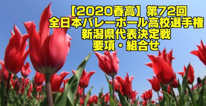 【2020春高】第72回全日本バレーボール高校選手権 新潟県代表決定戦 要項・組合せ