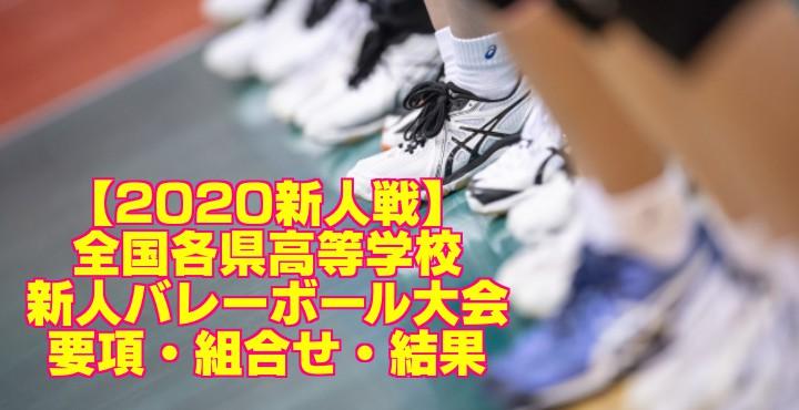 【2020新人戦】全国各県高等学校新人バレーボール大会 要項・組合せ・結果