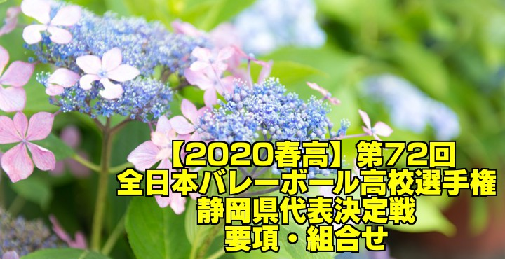 【2020春高】第72回全日本バレーボール高校選手権 静岡県代表決定戦 要項・組合せ