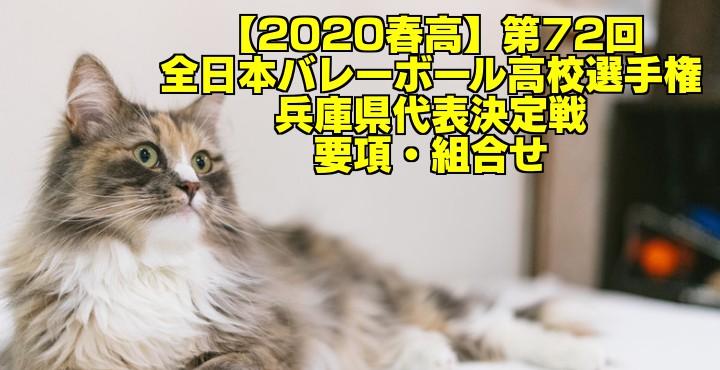 【2020春高】第72回全日本バレーボール高校選手権 兵庫県代表決定戦 要項・組合せ