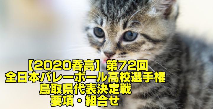 【2020春高】第72回全日本バレーボール高校選手権 鳥取県代表決定戦 要項・組合せ