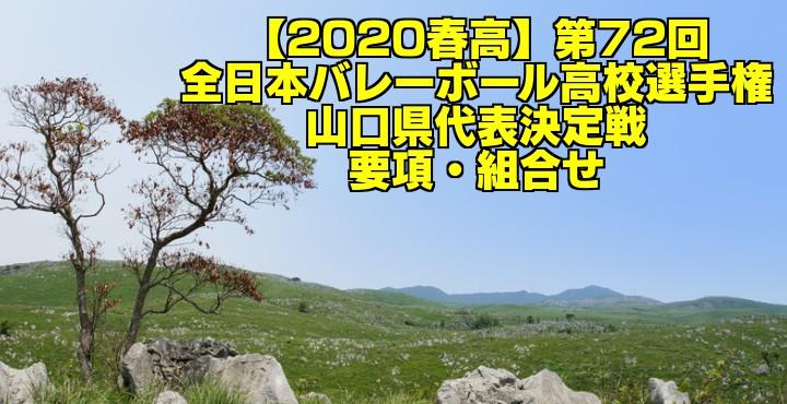 【2020春高】第72回全日本バレーボール高校選手権 山口県代表決定戦 要項・組合せ